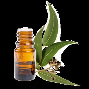 huile essentielle aspirateur contre les acariens